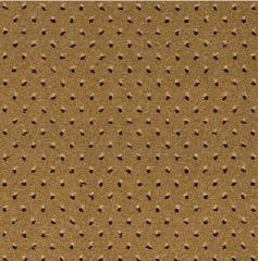 Highmont Gold Highmont Pindot 26/67332