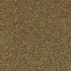 Tessera Acrobat 1321 Skittle