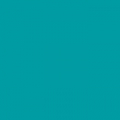 Omnisports REFERENCE TEAL