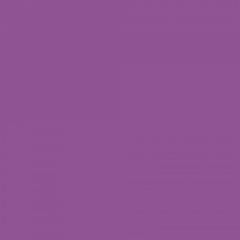 Scala 100 20323-118 Uni Core Violet