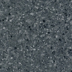 Fortis Anthracite