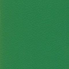 Sport B 6512 Green