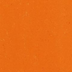 Colorette PUR 137-170 Kumquat Orange