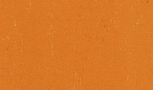 Colorette AcousticPlus LPX 2131-170 Kumquat Orange