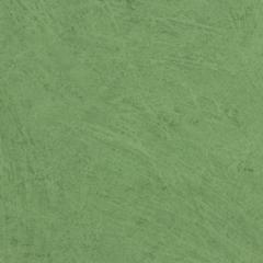Sarlon Nuance 436658 Green