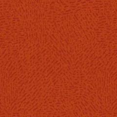 Montana 377003 Tangerine