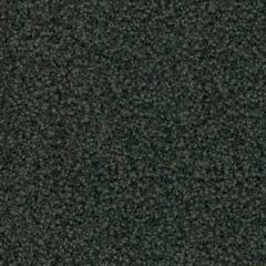 Tessera Sheerpoint 1156 torrent