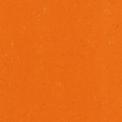 Colorette LPX 131-170 Kumquat Orange