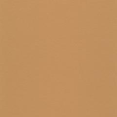 Uni Walton LPX 101-075 Linoleum Brown