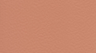 Surface 6146 CORAL