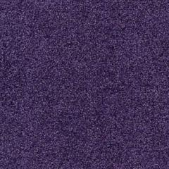 Tessera Sheerpoint 1161 crocus