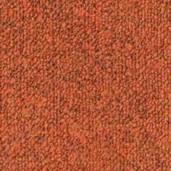 Tessera Apex 640 275 Ginger