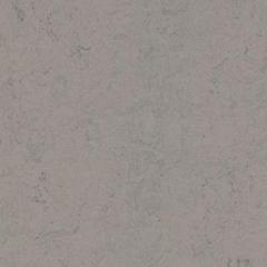 Marmoleum Solid Concrete 3704 Satellite
