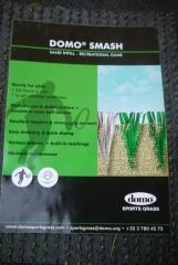 Smash Domo Smash