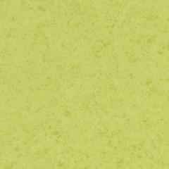Sarlon Canyon 43C2208 Lime