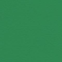 Multi-Use 5.0 6570 Mint Green