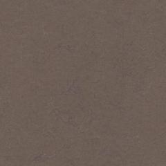 Marmoleum Solid Concrete 3568 Delta Lace