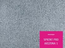 Sprint Pro